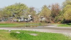 Vacían agua en Laguna del Coapinole para evitar que se seque
